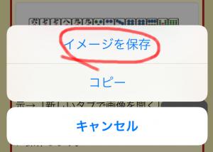 Safari for iOSの画像に関するメニュー