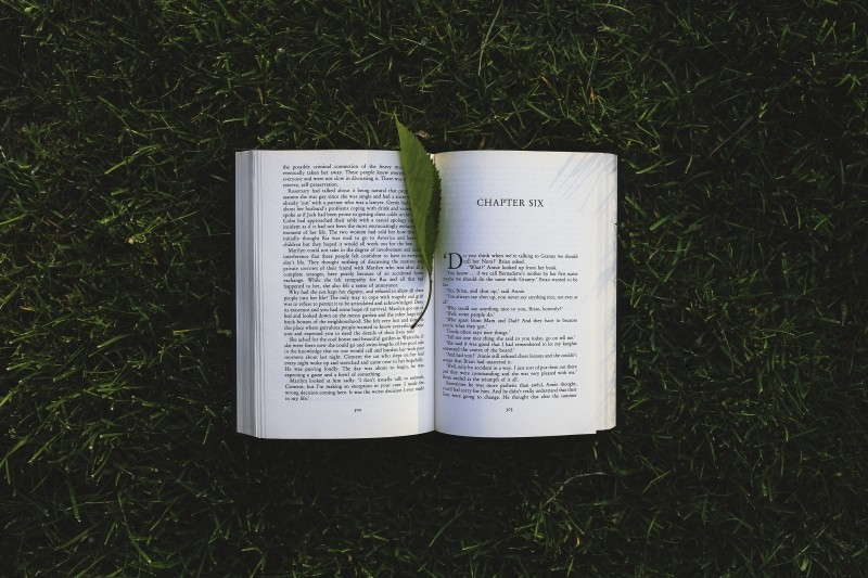 book-chpter-six-leaf-grass-read-reading-letters